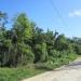 Belize Riverfront Land 169 Acres Western Belize2
