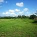 Belize 25 Acres Riverfront for Sale 6
