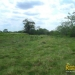belize-for-sale-25-acres-on-the-river-10