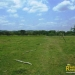 belize-for-sale-25-acres-on-the-river-6