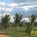 belize-real-estate_buena-vista-belize_11