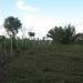 belize-real-estate_buena-vista-belize_37