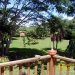 Belize Eco Resort for Sale - Verandah overlooking grounds