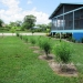2 Bed 2 Bath Home in San Ignacio Belize5