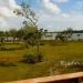 125 Acres Sapodilla Lagoon Belize 31