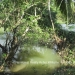 Belize Riverfront home Bullet Tree Cayo District12