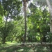 Belize Riverfront home Bullet Tree Cayo District15