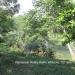 Belize Riverfront home Bullet Tree Cayo District9