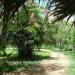 Belize Home on 3 Acres San Ignacio Cayo10