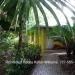 Belize Home on 3 Acres San Ignacio Cayo7