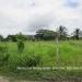 Belize Lot San Ignacio 1