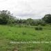 Belize Lot San Ignacio 2