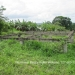 Belize Lot San Ignacio 8