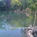2.54 acres Riverfront for sale13