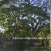 2.54 acres Riverfront for sale22
