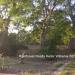 2.54 acres Riverfront for sale23