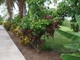 Belize Resort for Sale Grounds C131106SI