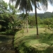 Belize Ranch for Sale 7