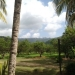 Belize Ranch for Sale 9