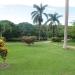 Large Lychee Farm in Belize 3