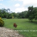 12.8 acres with 3 Homes20