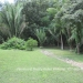 12.8 acres with 3 Homes27