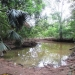 Five Acres western Belize with Home2