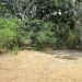 Five Acres western Belize with Home30