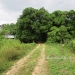 Five Acres western Belize with Home9