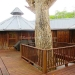 Belize Tree House for Sale Bullet Tree Village 47