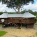 Belize Tree House for Sale Bullet Tree Village 60