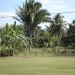 Belize Lagoon Front Shangri-la Property for Sale 131
