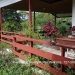 Belize Land Five Acres with Two Homes in San Ignacio Cayo District47