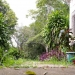 Belize Land Five Acres with Two Homes in San Ignacio Cayo District61