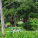 Belize Land Five Acres with Two Homes in San Ignacio Cayo District62