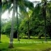 Belize Land Five Acres with Two Homes in San Ignacio Cayo District65