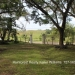 Belize Land Five Acres with Two Homes in San Ignacio Cayo District68