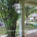 Casa Royale Home in Belize for Sale14