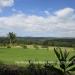 Home Nestled on 18 Manicured Acres of Cayo Land15