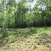 1 Acre Lot San Ignacio 5