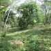 1 Acre Lot San Ignacio 6