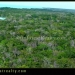 1500 Acres for Sale in Corozal Belize ready for development