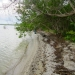 1550 Acres Corozal Ocean Coastline Sandy