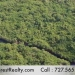 Belize 12000 Acres for sale across from Ambergris Caye Island 8