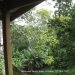 Belize Land with cascading waterfalls10