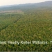 Belize Land 800 Acres for Sale1