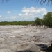 view west from palm toward mangroves (640x360)