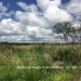 Belize Land 50 Acres near Belmopan4