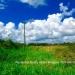 Belize Land 50 Acres near Belmopan9