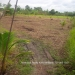 Belize Residential Lot Close Commute to Belmopan1